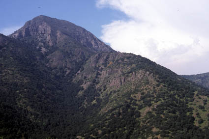 Cerro Manquehue, ruta Agua del Palo