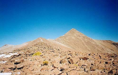 Un pequeño gigante del altiplano