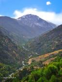 Cerro Manchón desde Yerba Loca