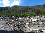 Cruce del río y ruta por el bosque quemado