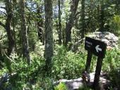 Letrero hacia el camping