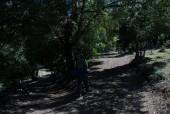 Camino entrada