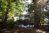 Lugar para campamento laguna La Plata