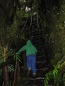 Escalas de madera