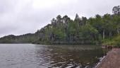 Laguna los Pumas