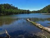 Laguna Alicia
