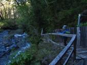 Sendero junto al río Truful