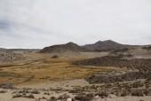 Bofedal Parinacota