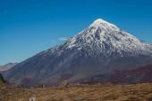 Volcán Lanín desde Puesco