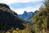 Las Peinetas / Sierra de Millalifen