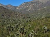 Vista desde el mirador del Amasijo