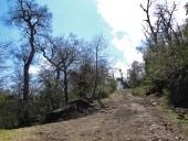 Camino y vehicular y entrada al campamento