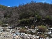 Río Rondadero