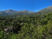 Vista hacia el Roble y Punta Imán
