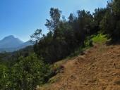 Inicio del sendero desde el Plateau