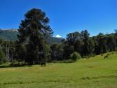Vista desde la casa del guardaparque hacia el lago Epulafquen