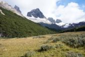 Pampas en valle del Parada