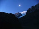 La Paloma de noche con luna