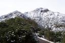 Pochoco inusulamente nevado