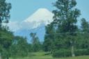 Osorno enero 2010