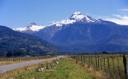 Yate desde camino Puelo - río Blanco