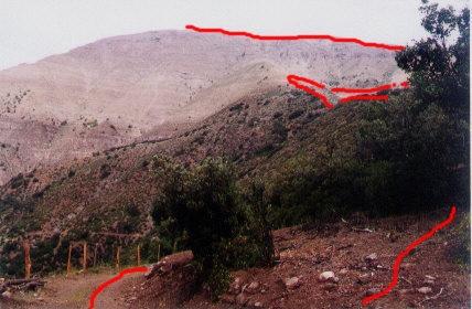 Espinazo