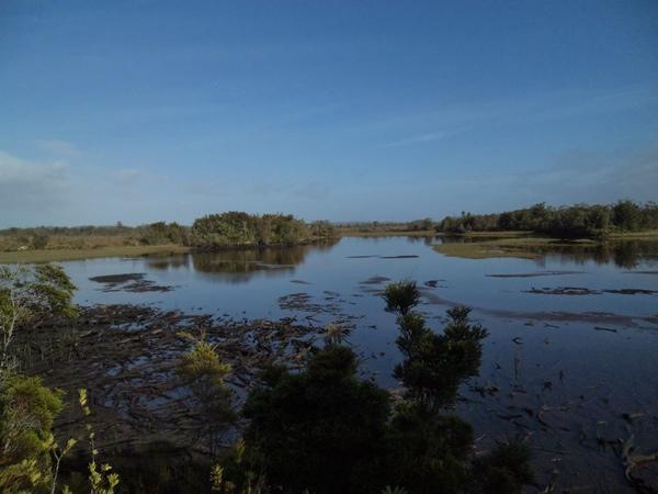 Laguna los Ciervos