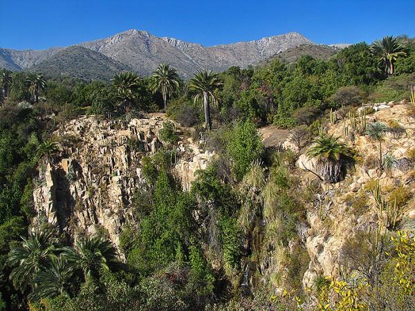 Cascada La Cortadera de las Palmas de Ocoa