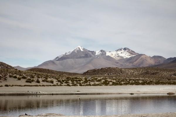 Laguna Pillicota y Taapaca