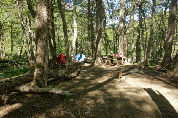 Campamento Estero El Bosque
