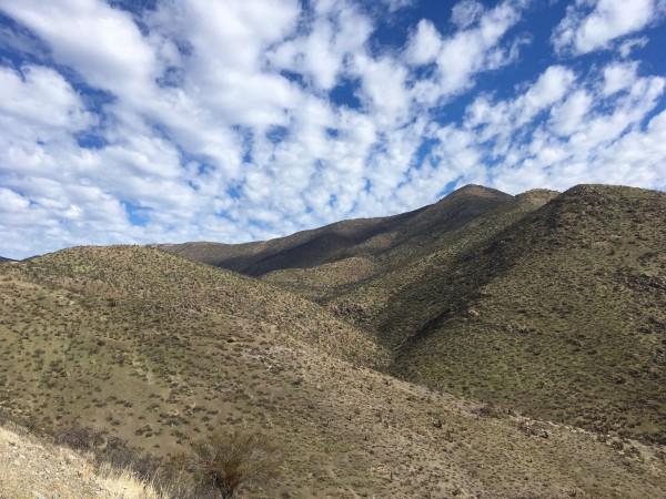 Cerro El Piojo