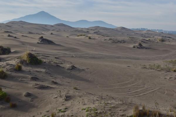 Centro del Campo Dunar de Ritoque