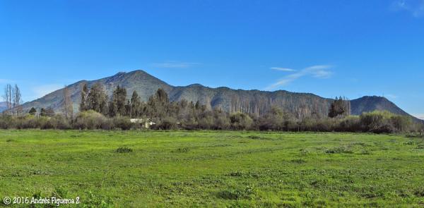 Cerro Trocalán
