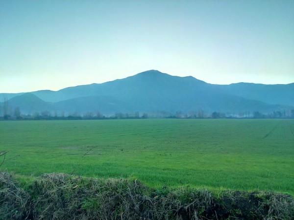 Cerro Quillayquen