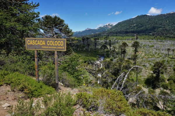 Letrero cascada Coloco