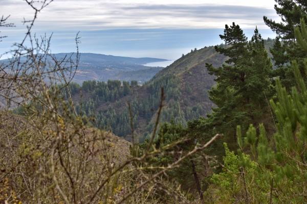 Vista de Laguna Verde