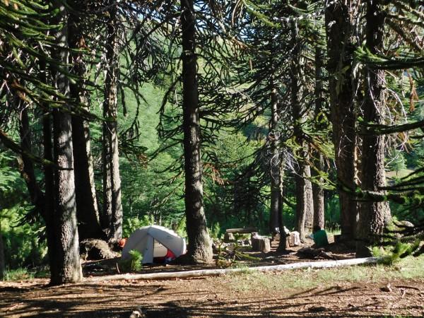 Campamento junto a las termas