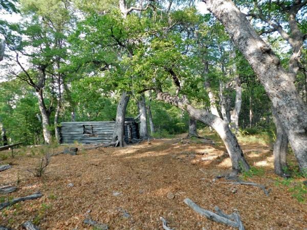 Cabaña abandonada