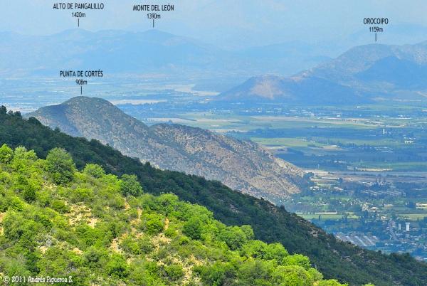 Cerro Punta de Cortés
