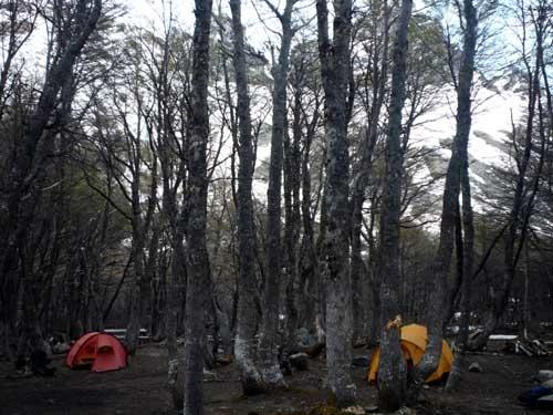 Campamento Neozelandes