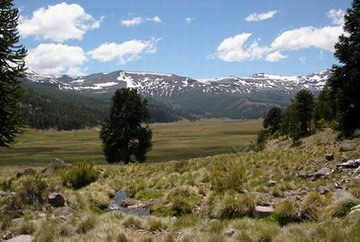 Vista valle Mitrauquén Alto.