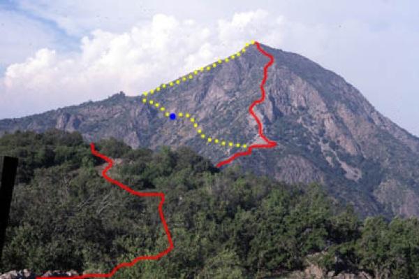 Variante ruta Bosques del Polo